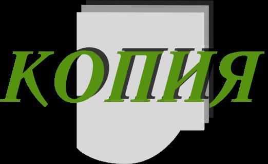 "Фирма ""Копия"" Курск Logo"